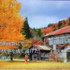 昭和村の美しき廃校 この世界は、貴方にどんな感動を呼び起こすか