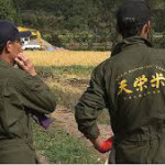 7年連続、国内最大規模のコンクールで金賞は福島にある天栄米です。